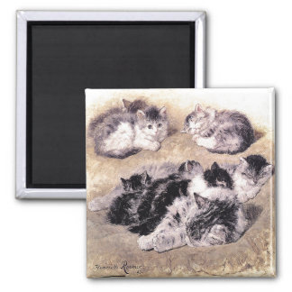 Magnet: A Study of Cats Square Magnet