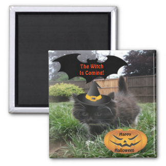 Magnet Black Cat The Witch Is Coming Fridge Magnets