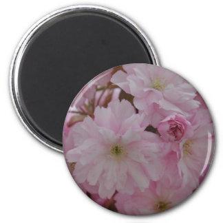 Magnet: Cherry Blossom 6 Cm Round Magnet