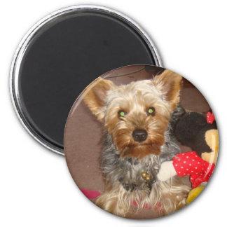 "MAGNET""dog"" 6 Cm Round Magnet"
