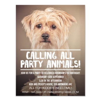 |MAGNET| Dog Meet Up Puppy Party Invitation Magnetic Invitations