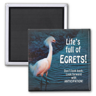 MAGNET - ENCOURAGEMENT -EGRETS (Concept - Regrets)