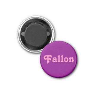 Magnet Fallon
