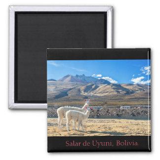 Magnet, Flames Salt flat of Uyuni, Bolivia Square Magnet