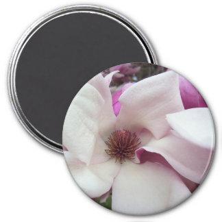 Magnet - Saucer Magnolia Bloom