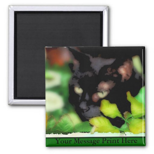Magnet with Black Cat