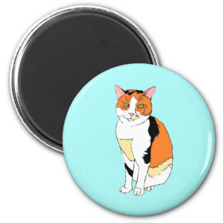 Magnet with fancy multicolor cat design
