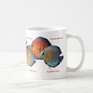 Magnetic cup of wild deisukasu