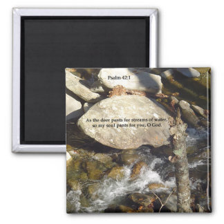 Magnets: Stream Psalm Square Magnet