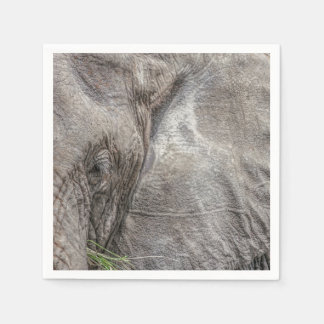 Magnificent Elephant Cocktail Napkins Disposable Napkin
