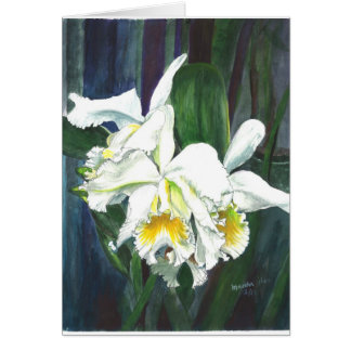 Magnificent orchids card