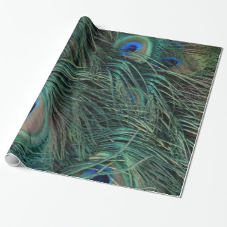 Magnificent Peacock Feathers Wrapping Paper