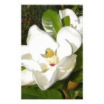 Magnolia Blossom Custom Stationery