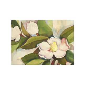 Magnolia Blossoms Stretched Canvas Prints