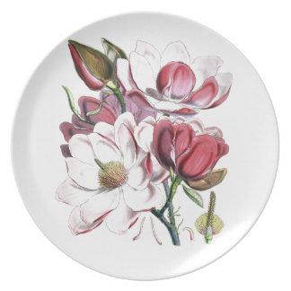Magnolia Campbellii Plate