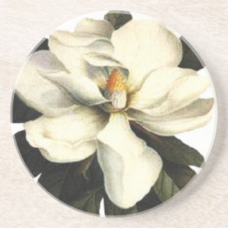 Magnolia Beverage Coaster