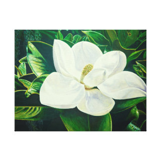 Magnolia Flower Canvas Print