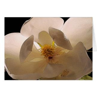 Magnolia Flower Card