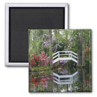 Magnolia Gardens, S.C. Magnet