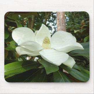 Magnolia Grandiflora Mouse Mat