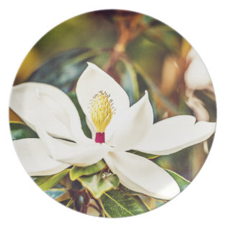 Magnolia in Bloom Plate