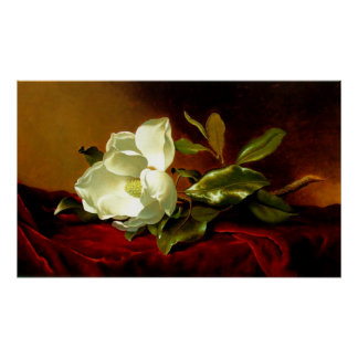 Magnolia on Red Velvet - Print
