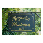 Magnolia Plantation Charleston South Carolina Poster