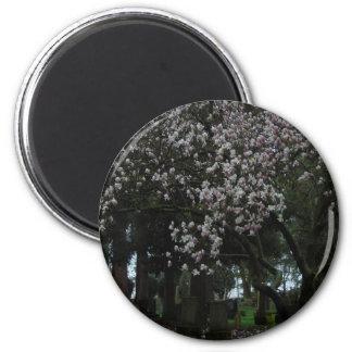 Magnolias Forever 6 Cm Round Magnet