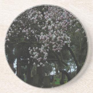 Magnolias Forever Coaster