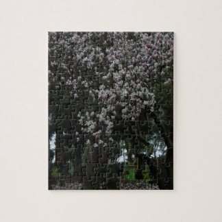 Magnolias Forever Jigsaw Puzzle
