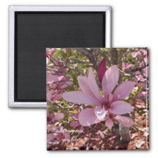 Magnolias magnet