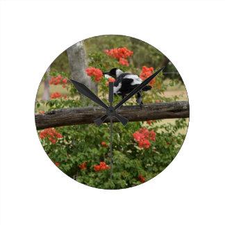 MAGPIE BLACK AND WHITE RURAL AUSTRALIA WALL CLOCKS