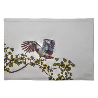 MAGPIE GOOSE IN FLIGHT AUSTRALIA ART EFFECTS PLACEMAT