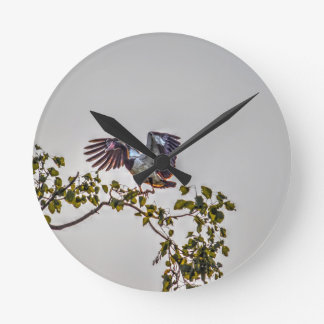 MAGPIE GOOSE IN FLIGHT AUSTRALIA ART EFFECTS ROUND CLOCK