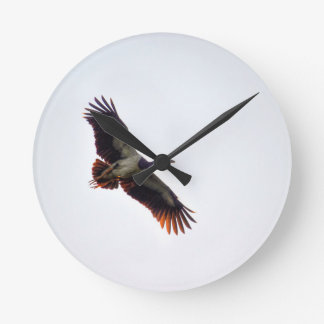 MAGPIE GOOSE QUEENSLAND AUSTRALIA ART EFFECTS ROUND CLOCK
