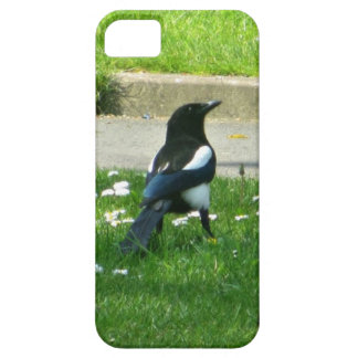 Magpie iPhone 5 Cover