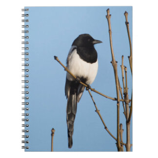 Magpie Notebook
