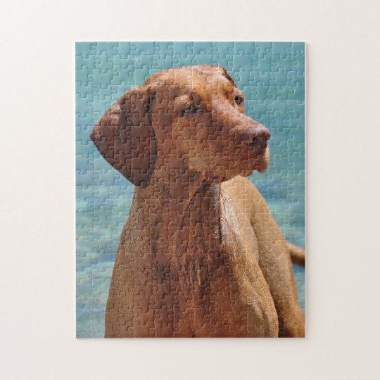 Magyar Vizsla Dog Jigsaw Puzzle