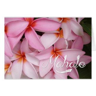 Mahalo Pink Plumeria Card
