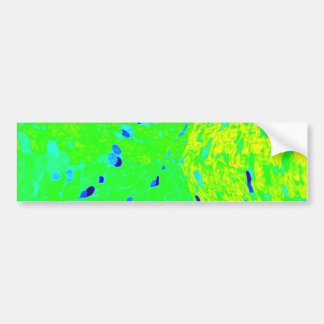 Mahi Mahi Dolphin Fish Art Colors Bumper Sticker