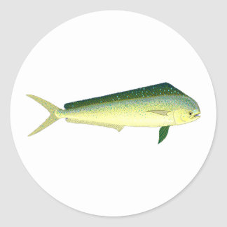 Mahi Mahi - Dolphin Fish Art Round Stickers