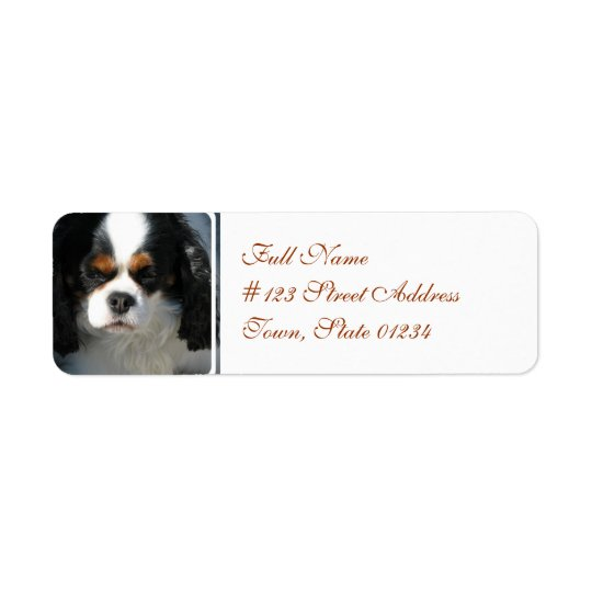 Mailing Label-2 - Customised Return Address Label