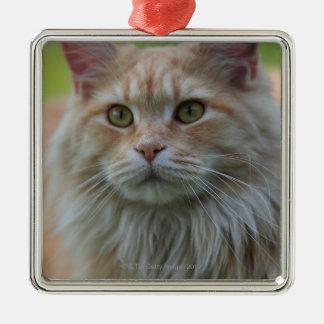 Main coon cat metal ornament