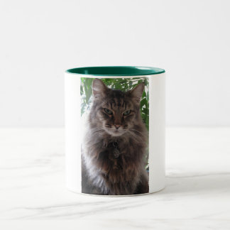 Main Coon Cat Mug