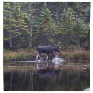 Maine Bull Moose Napkin