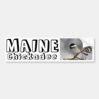 Maine Chickadee Bumper Sticker