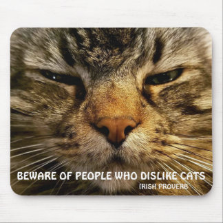 Maine Coon and Irish proverb Meme Mouse Pad