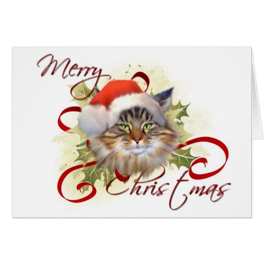 Maine Coon Cat Christmas Card