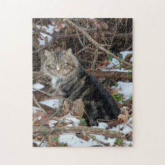 Maine Coon Cat in Forest Jigsaw Puzzle