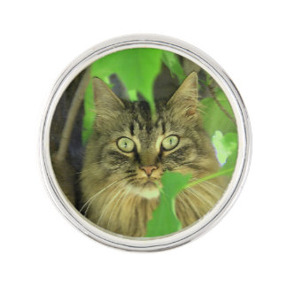 Maine Coon Cat in Tree Lapel Pin